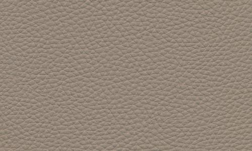 TAUPE CLAIR B009