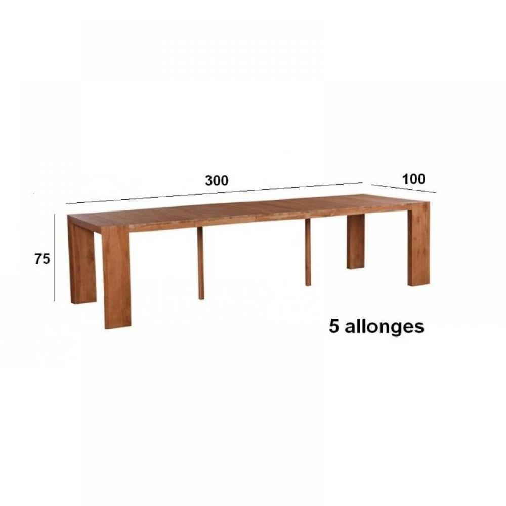 Consoles extensibles meubles et rangements console table extensible authent - Table extensible 20 couverts ...