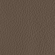 50300 - TAUPE