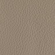 50250 - TAUPE CLAIR